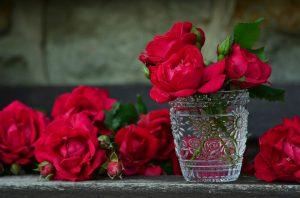 Banho de rosas para problemas afetivos