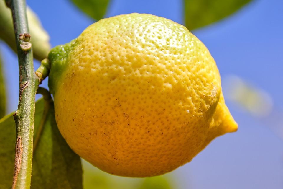 Simpatia do limão para afastar más energias no trabalho