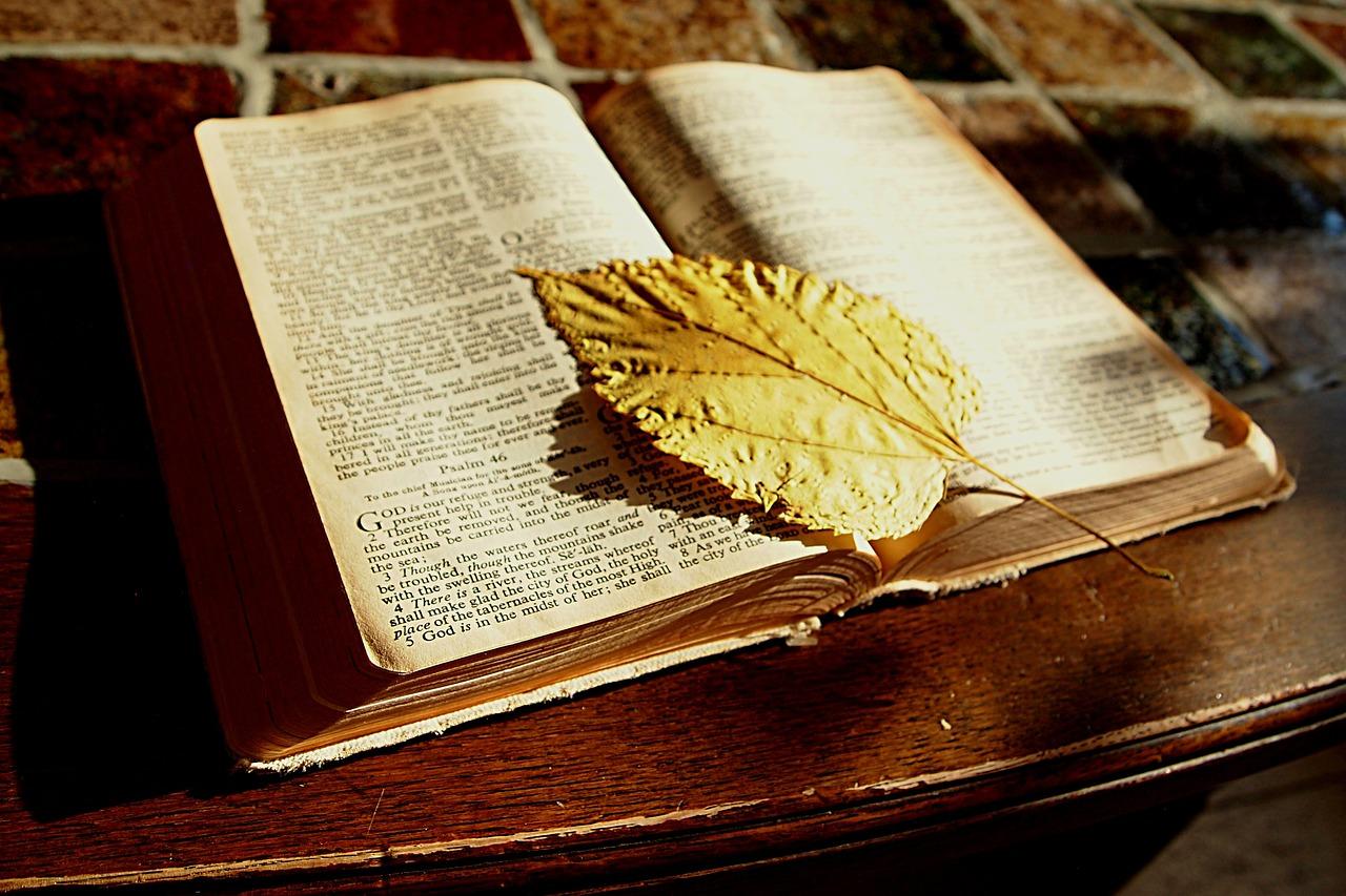 O poder do Salmo 23 - Afasta a falsidade e atrai segurança